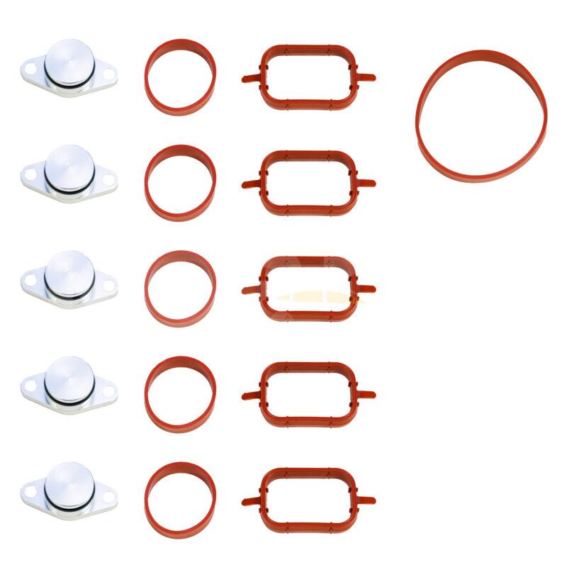 BMW dyzelinio variklio įsiurbimo kolektoriaus aklės, sandarintojai (6X 22mm)
